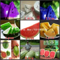 Wholesale Fruit seeds varieties PC mix natural growth of watermelon seeds square watermelon seeds mini potted plants