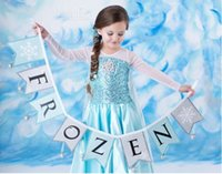 Cheap princess elsa cosplay frozen anna coronation costume long sleeve elsa dress princess dress frozen dress kids costume hot sale W0041