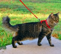Wholesale Cat Harness Lead Leash Traction Rope Dog Rope for Pet color