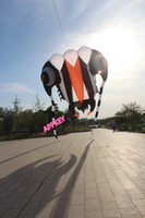 Wholesale new design square meters trilobites soft kites Weifang kite designed by Guinness World recorder holder