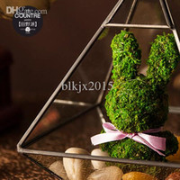Wholesale The countre send gift glass bear field living moss import Paul flower delivery scheduled July th