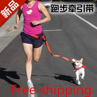 Wholesale Hot Selling Running Dog Hauling Cable Leads Collars Dog Traction Belt Dog Traction Rope dog collar Pet Products