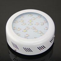 Wholesale full spectrum ufo w led plant growing light for greenhouse