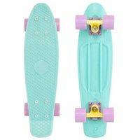 snake skateboard - 2016 cool Boy Girls Retro Cruiser skate board skateboard DIY Pastel Color Penny skate Board quot Penny longboard