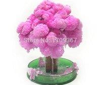 Educational,Early Development science kit - Hot Sale New GC SD P x11cm Pink Big Magic Growing Paper Sakura Tree Kit Desktop Cherry Blossom DIY Christmas Kids Science Toys