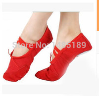 Wholesale Professional Belly Ballet Dance Shoes and Retail Pig Skin Women Breathable Flats Practice Gym Shoes