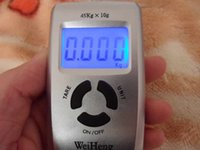 Wholesale WH Brand kg d5 Steel Electronic Fishing Scale Digital Hang Scale Packet Scale with Retail Package no Bettery