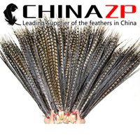 Wholesale CHINAZP Factory Large Size cm inch Unique Natural Lady Amherst Pheasant Tail Feathers