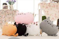 Wholesale Hot Sale cm plush toy stuffed animal doll talking anime toy pusheen cat or pusheen skin for girl kid kawaii cute cushion brinquedos