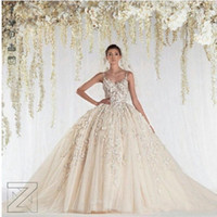 Wholesale DW Ball Gown Ziad Nakad Wedding Dresses Spaghetti Straps Lace Appliques Beads Crystal Sheer Bridal Gowns Princess Arabic Wedding Gowns