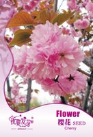Wholesale Garden Flower The cherry blossomSeeds bag creating home garden Plant Flowers