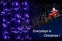 Wholesale Promotion M Long bulbs Xmas Outdoor LED Light Male Female Plug Long bright Mode flash Controller Colors