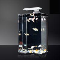 aquarium fish - Oblong Shape Exclusivity Phantom Fish Tank Small Ecological Aquarium Mini Originality Fish Tank Design Patent Products