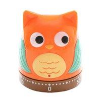 Wholesale Owl Kitchen Timer Mechanical Timer Alarm Clock Reminder Owls Hooters shape Minutes Kitchen Timing Tools