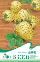 Cheap Seeds White Strawberry Delicious Rare Fruit Seed HOT New Garden Plant Home B056 Free Shipping from China