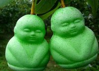 Cheap 2pcs a set twins green color baby ginseng tree Seed 100% real