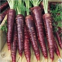 Cheap 30seeds bag Purple carrot seeds imported anti-aging anti-cancer purple ginseng tablets Need