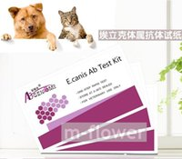 animal testing cats - E canis Canine Dog Feline Cat Ehrlichia Ab One Step Rapid Test Kit For Veterinary Pet Animal test pouch