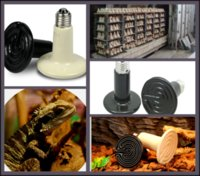 Wholesale 20pcs fast delivery Grow Plant Lamp Zoo Pet Reptile Heater W Ceramic Infrared Emitter Heat Lamp ceramic bulb P404