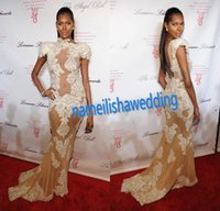 new york dresses - Michael Costello Prom Party Gowns Sexy Fashion Model Jessica White Attends Angel Ball in New York Sheer Lace Formal Evening Dresses
