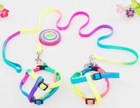 Wholesale Colorful adjustable Dog Harnesses Leashes Rainbow Colors Small pet Dog and Cat Pet Collar Traction Rope Leash Pet Supplies