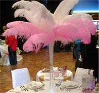Wholesale 10Pieces cm cm Natural Ostrich Feathers quot quot For Wedding Party Banquets Vase Decoration