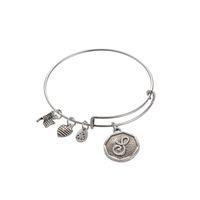 Wholesale Diy Charm Alex and Ani h Bracelet Letters Pendant Expandable Wire Bracelet Love Bangle Love Bracelet Pulseira Feminina Pulseira Masculina