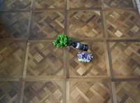 Wholesale Solid Wood floor Parquet flooring Polygon Wood Flooring Custom wood floor Black walnut birch wood flooring Oak Merbau Natural oil wood floor