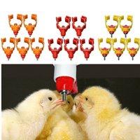 Wholesale bag Durable Chicken Nipple Water Drinker Feeder Water Cups Poultry Drinkers Waterer Feeding Supplies