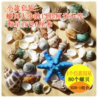 Wholesale Natural Pieces sea shells snail Conch and Pieces Starfish home decor aquarium decoration fishbowl nautical