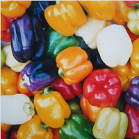 bell pepper fruit - 100pcsVegetable fruit Colourful bell pepper seed Sweet chili seeds Bonsai plants Seeds for home garden seeds bag