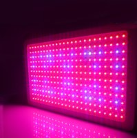 Wholesale Mini w cob led grow light with good quality for greenhouse hydroponics for plant grow and blossom stock in Germany