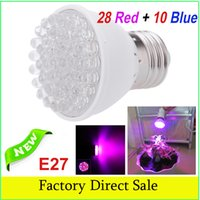 Wholesale E27 LEDs Plant Grow Light Bulb Garden Hydroponic Lamp Red Blue for Indoor Flower Plants Growth Vegetable Greenhouse Lamp L0101