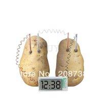 antique school clocks - Potato Fruit Clock Green Science Project Kit kids Lab Home School Experiment