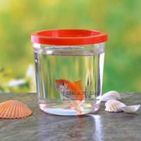 bettas fish - The crawler feeding bottles Small tortoise and small fish Bettas cup Transparent plastic fish tank Feed the spider box