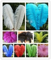 Wholesale High quality beautiful ostrich feather cm inches U pick Color Wedding centerpiece decor