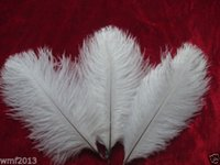 chicken - 2015 New FashionFactory Perfect White CM inches natural ostrich feather