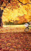 bicycle forest - 200cm cm ft ft Maple leaves tree forest bicycle vinyl background for photography