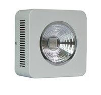 Wholesale Newest led grow lamp W best for flower and vegetable high power led plant grow light red blue orange