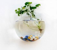 Wholesale top opening mouth wall planter terrarium bubbles wall goldfish tank wall planter glass vase for garden deocr wall decor house ornaments