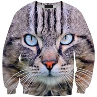 big eyed cats - Korean version of loose big yards long sleeve T shirt bottoming shirt College Wind hedging printing blue eyed cat sweater Sws0208