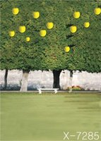 apple tree sprays - 300cm cmYellow apple green trees backgrounds for photo studiophotography backdrops
