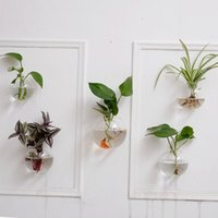 air planes - 5PCS set Crystal Glass Wall Planters Hanging Wall Air Plants Bread Terrariums With Moss wall fish tank for wall decor houseroom ornament