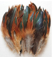 Wholesale Natural light colored Rooster feathers inche