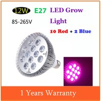 Wholesale Indoor Flower Plants Greenhouse E27 W V Led Light Lamp Red Blue Hydroponic Led Lamps For Plants