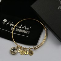 agate box - Twelve design mm diameter gold alex and ani Birthstone Charm Bangle with box and Drawstring bag