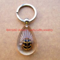 beetle bugs insects - Real Beetle Bug Keychains Drop Shape M Size Insect Amber Resin Keychain Bug Keyring