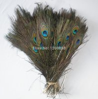 Wholesale 100 Natural Peacock Feather Feather hair Extension inch F025