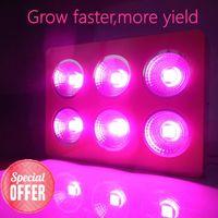 apollo grow light - Apollo W greenhouse light COB high power led nm grow lights for indoor grow light led Grow