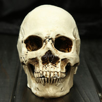 Wholesale Halloween Haunt Realistic Human Skull Head Resin Medical Stage Prop Decoration A